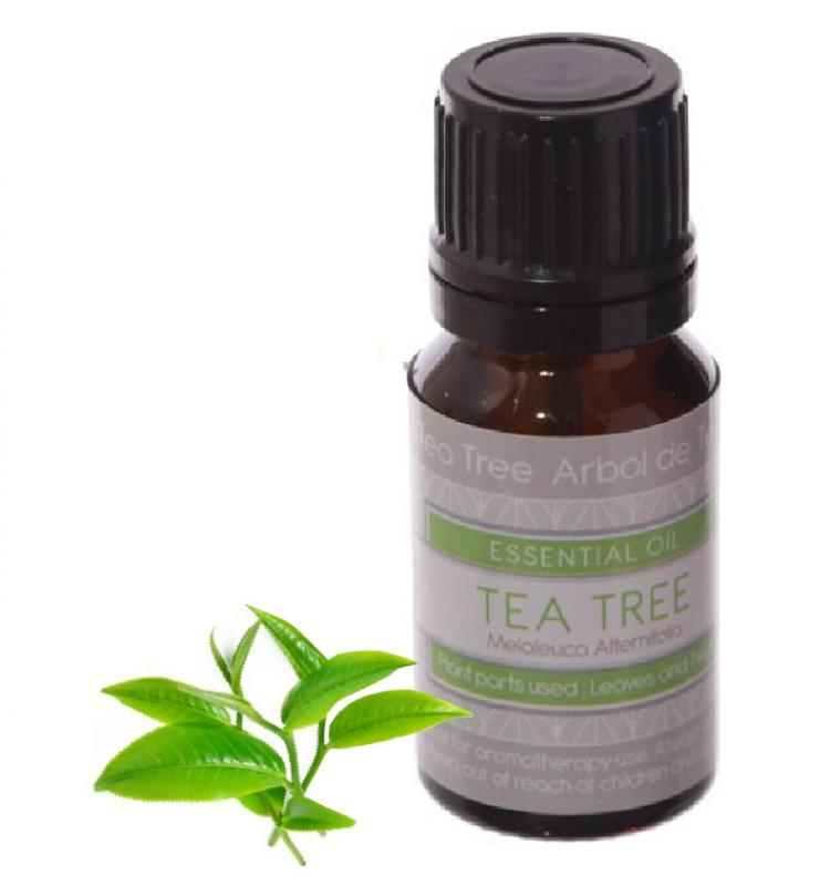 Eden Essential Oil Tea Tree 10ml, Esenciálny olej